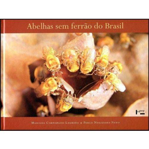 Abelhas Sem Ferrão do Brasil