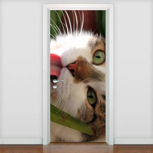 Adesivo de Porta Animais - Gato