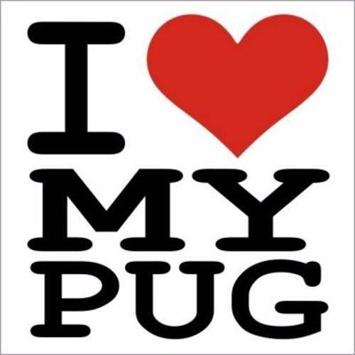 Adesivo para Carro Pet Pug Pugmaníacos Cachorro