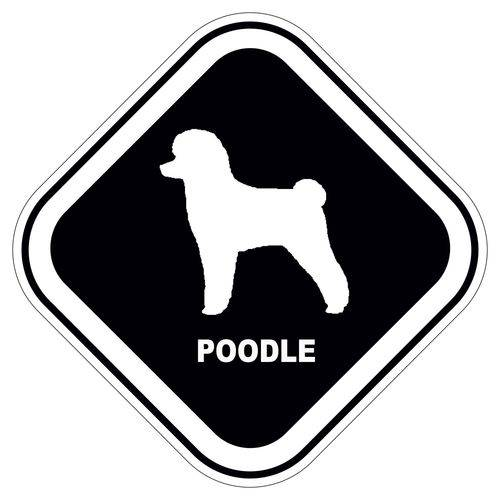 Adesivo Poodle