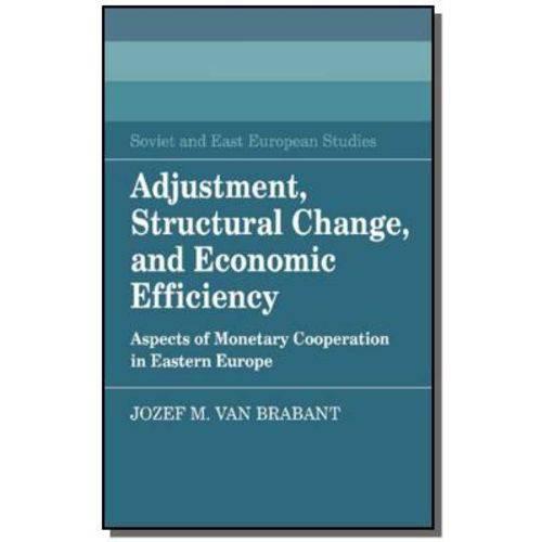 Adjustment, Structural Change, And Economic Effici