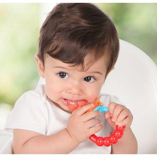 Alimentador de Frutas para Bebê