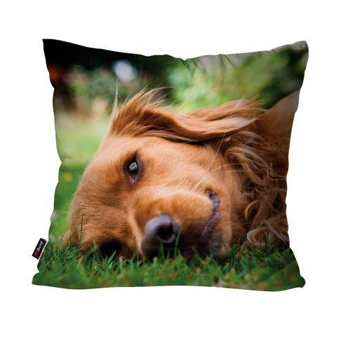 Almofada Avulsa Verde Cachorro no Gramado