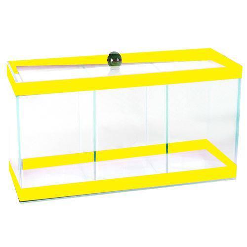 Aquário Beteira 03 Divisões Amarela