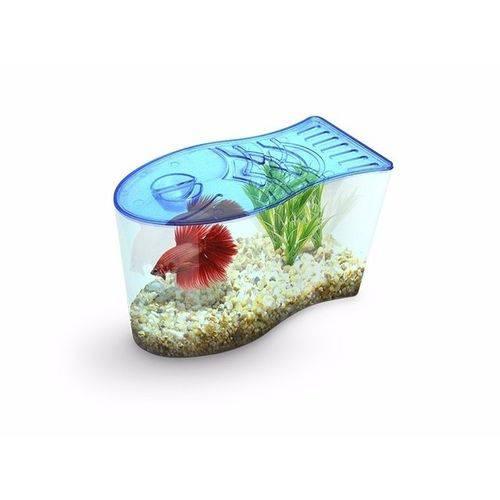 Aquário Beteira para Bettas Formato de Peixe Decorada