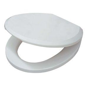 Assento Plástico Aspen Bco Gelo Ap 75 Deca