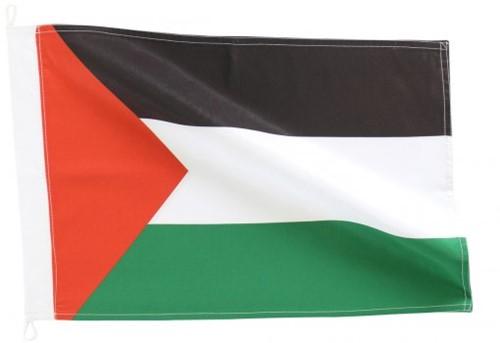 Bandeira de Palestina