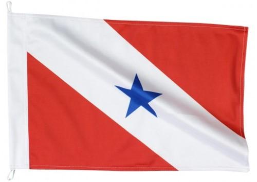 Bandeira de Pará