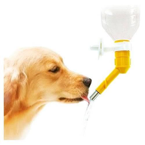 Bebedouro Automático para Cães e Gatos Bico para Garrafa Pet Western PET90
