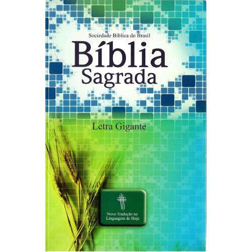 Bíblia Grande - Ntlh - Letra Gigante (Capa Verde / Trigo Brochura)