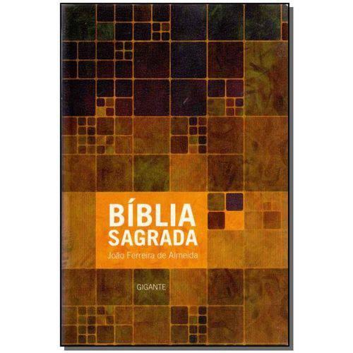Biblia Sag. Gigante C Mapa - Luxo Neutra Estampada