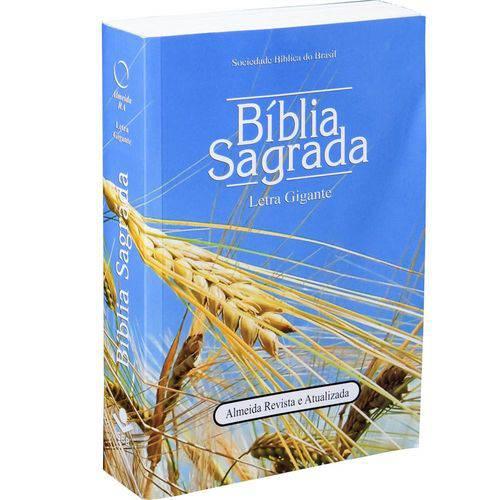 Biblia Sagrada Letra Gigante - Capa Ilustrada Trigo - Sbb