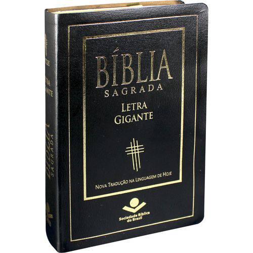 Bíblia Sagrada Letra Gigante Luxo Ntlh Linguagem de Hoje