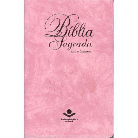 Bíblia Sagrada Letra Gigante RA Rosa