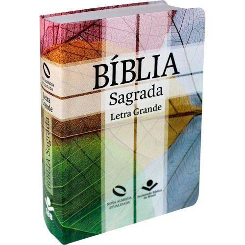 Biblia Sagrada Letra Grande
