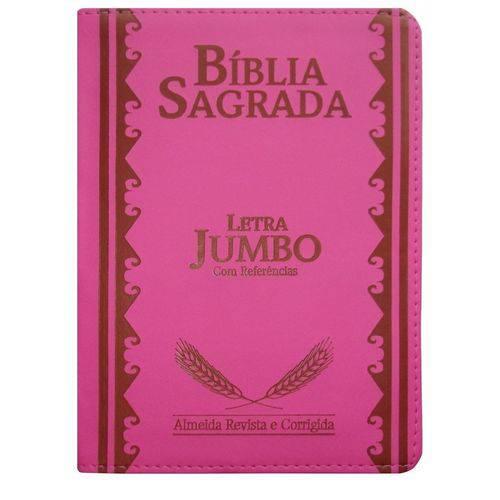 Bíblia Sagrada Letra Jumbo-Pink