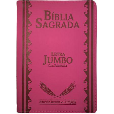 Bíblia Sagrada Letra Jumbo Pink