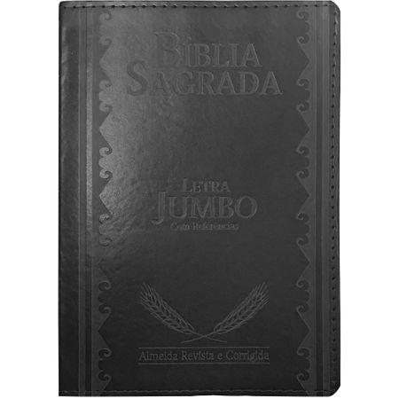 Bíblia Sagrada Letra Jumbo Preta