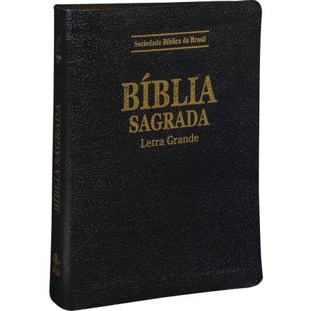 Bíblia Sagrada RA Pequena com Letra Grande Preta