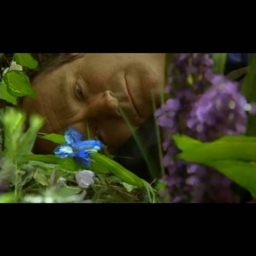 Blu-Ray Amor Além da Vida