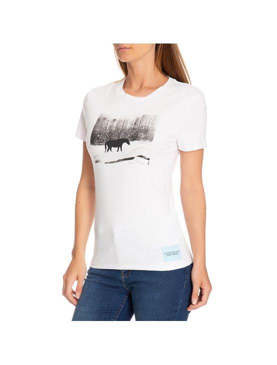 Blusa Ckj Fem Mc Andy Warhol Landscape - Branco - PP
