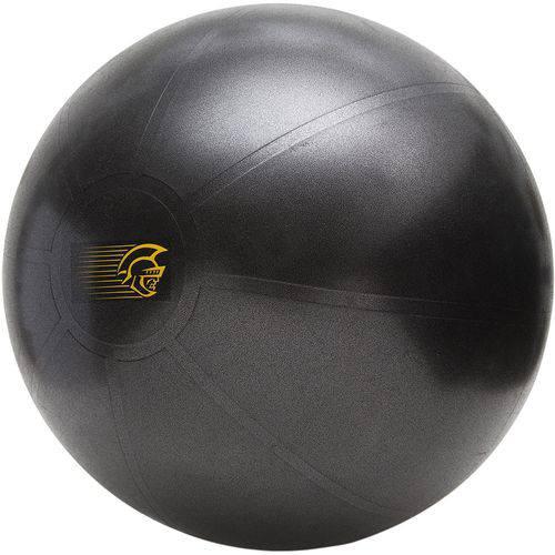 Bola de Exercícios Pretorian Performance FBT65 65 CM