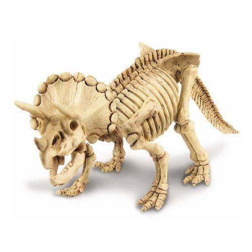 Brinquedo Escavação de Dinossauro - Tricerátopo da 4m