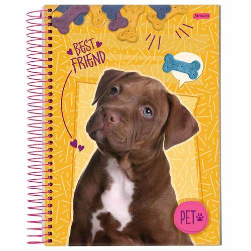Caderno 1/4 Pet 96 Folhas Jandaia 1017440