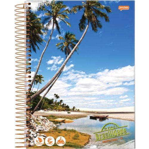 Caderno Universitário 1 Matéria Brasilidade - Jandaia 1008710