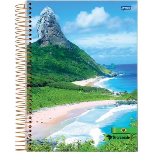 Caderno Universitário Brasilidade 10 Matérias - Jandaia 131524