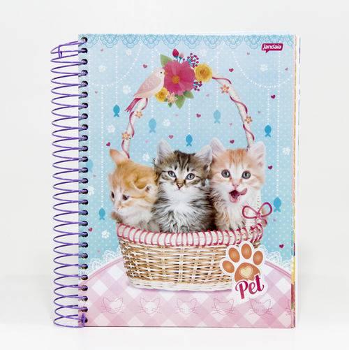 Caderno Universitário Sortido 15 Matérias - Pet