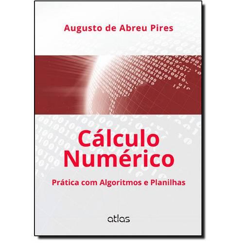 Cálculo Numérico: Prática com Algoritmos e Planilhas