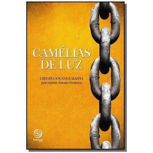 Camelia de Luz