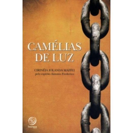 Camelias de Luz - Boa Nova
