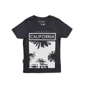 Camiseta Manga Curta Juvenil para Menino - Preto 10