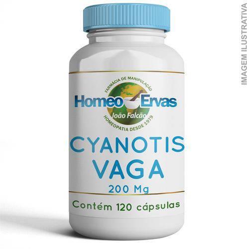Cyanotis Vaga 200mg - 120 Cápsulas