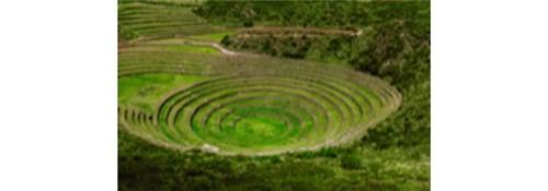 Diagnóstico Agronômico de Campo em Sistemas de Produção Agrícola | UNOPAR | PRESENCIAL Inscrição
