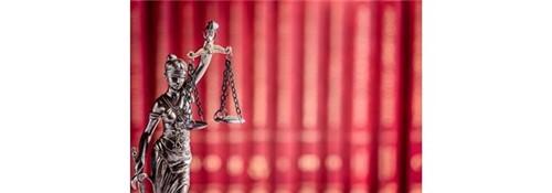 Direito Constitucional   LFG   EDUCAÇÃO a DISTÂNCIA Inscrição