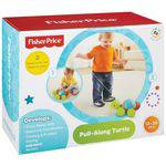 Empurra Tartatuga Y8652 - Fisher Price