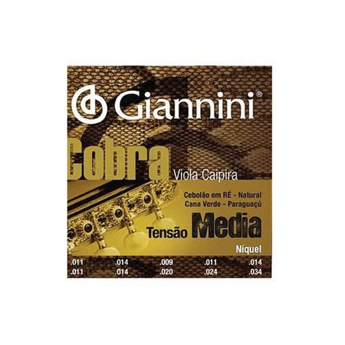 Enc Viola Giannini Cobra Gesvm -Media