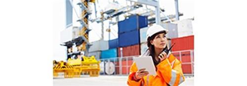 Engenharia de Segurança do Trabalho | PITÁGORAS | PRESENCIAL Inscrição