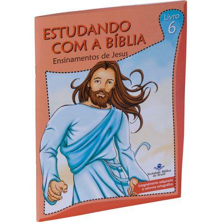 Estudando com a Bíblia Ensinamentos de Jesus