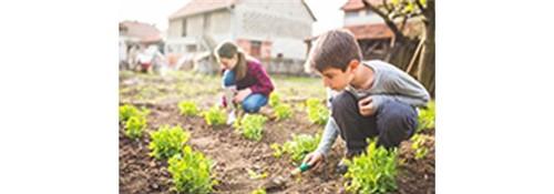 Fertilidade do Solo e Nutrição Mineral de Plantas | UNIC | PRESENCIAL Inscrição