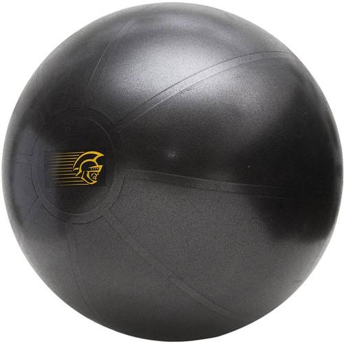 Fit Ball Training Pretorian Performance 55 - FBT55 PP