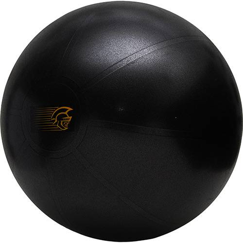 Fit Ball Training Pretorian Performance 65 - FBT65 PP