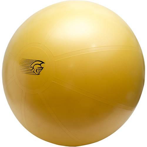 Fit Ball Training Pretorian Performance 75 - FBT75 PP