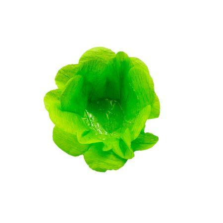 Forminha Decorativa Verde Claro