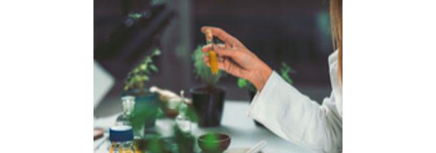 Homeopatia | PITÁGORAS | PRESENCIAL Inscrição