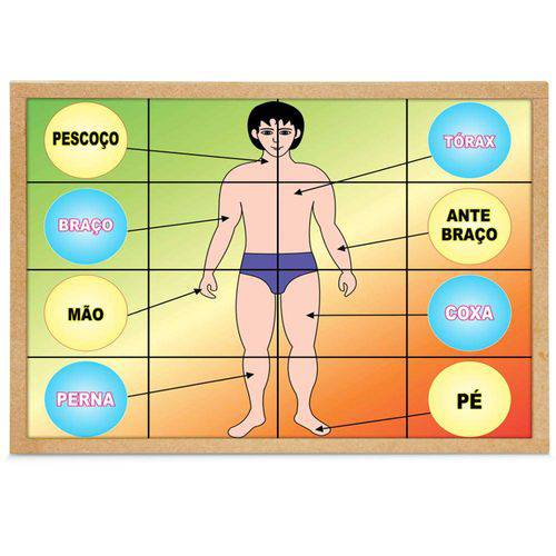 Jogo Quebra-Cabeça Corpo Humano com 16 Peças + 1 Base 1190 - Carlu