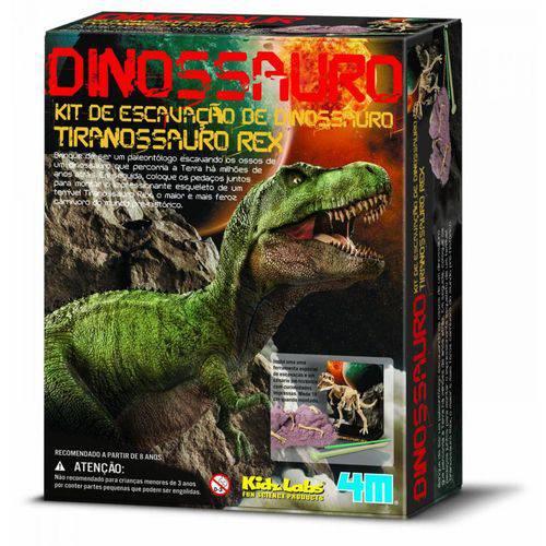 Kit de Escavação - Tiranossauro Rex - 4m
